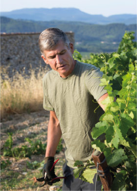 Victor Taylor winemaker in Rhone Valley